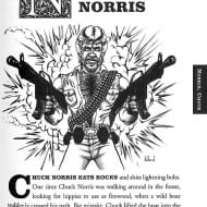 The Alphabet of Manliness Chuck Norris Page