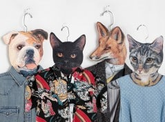 Are you keeping any animals in your closet?