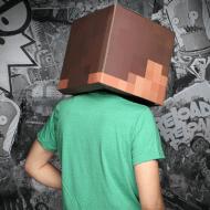 Minecraft Steve & Creeper Head Costume Pixel Art