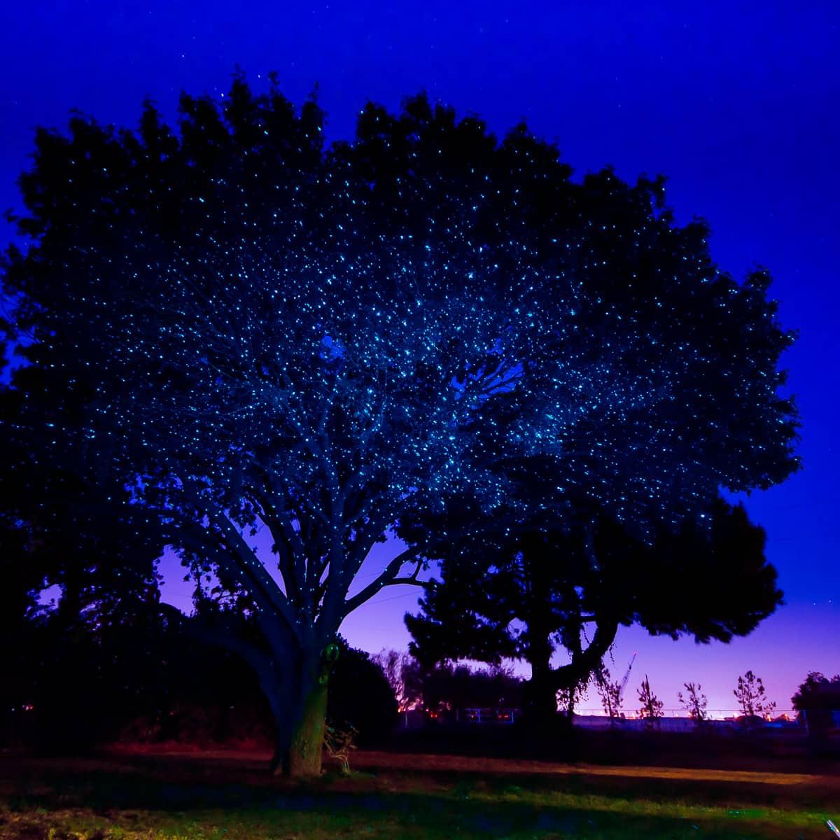 Sparkle Magic Illuminator Laser Light