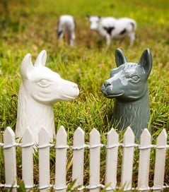 Spice things up with a couple of table llamas.