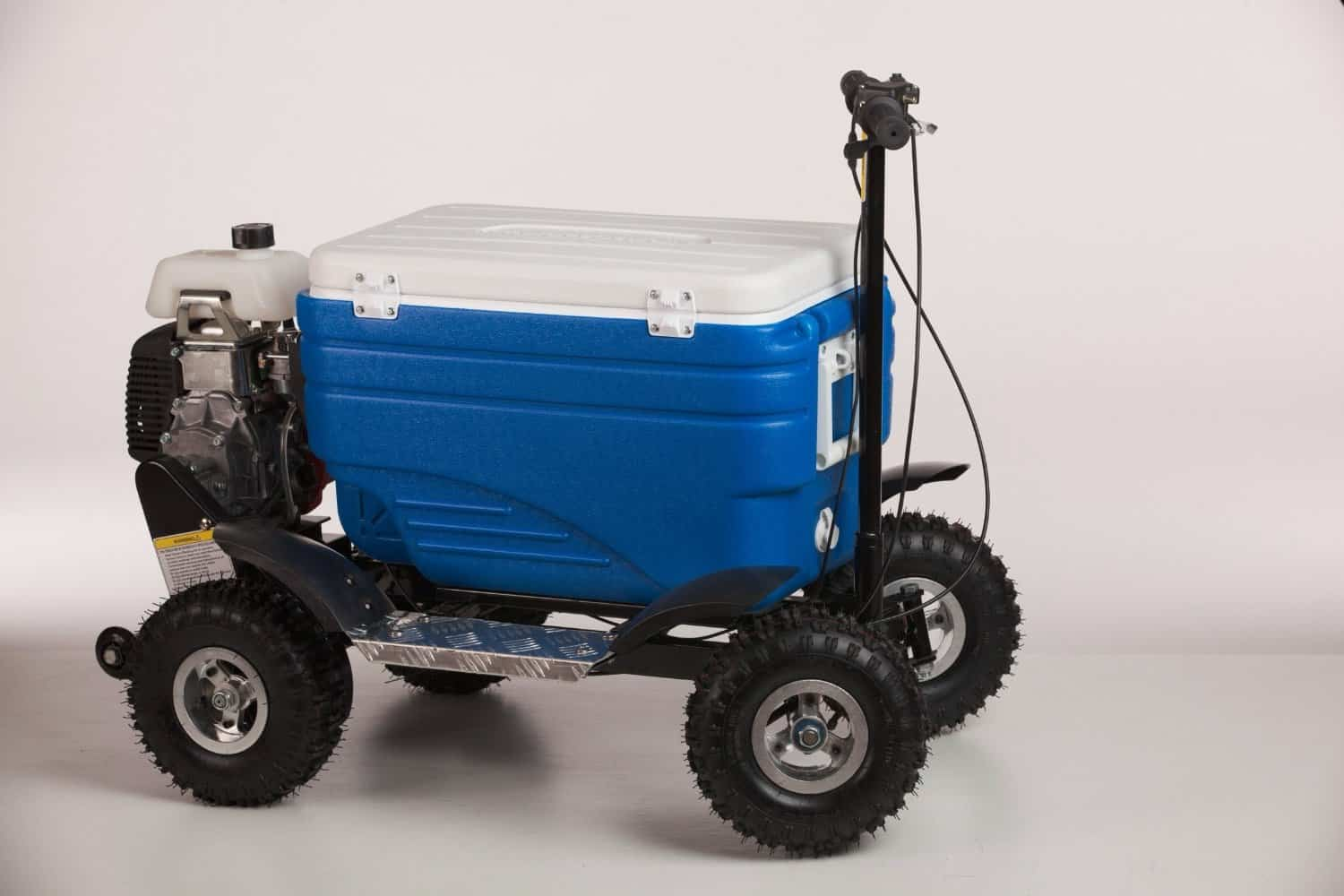 crazy coolers motorized cooler noveltystreet