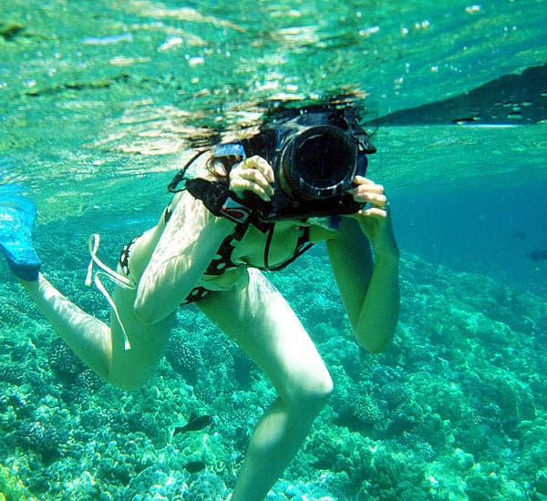 How do you say cheese underwater?