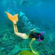 Mahina Mermaid  Aqua Marine Merfins Swim with Style