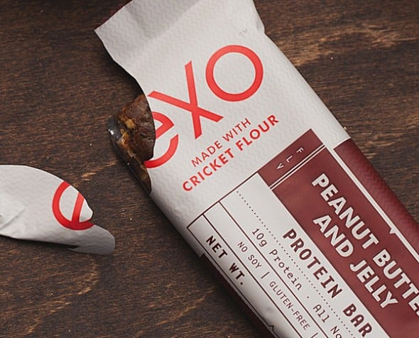 Protein bars packed with cricket power!