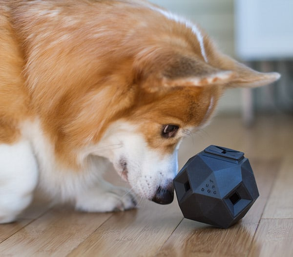 Modern modular dog puzzle toy.