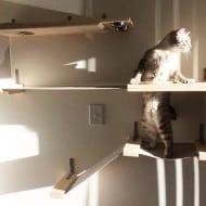 Catastrophicreations Cat Hammock Feeder Station Pet Treat