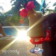 SipCaddy Bath & Shower Portable Cupholder Pool Accessory