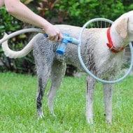 TeleBrands Woof Washer 360 Efficiently Wash Dog