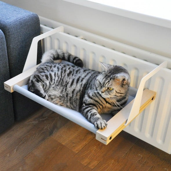 Flexible cat chillpad.