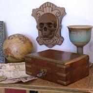 Cardboard Safari Vince Wall Mounted Human Skull Cool Boyfriend Gift Idea