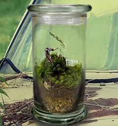 Tiny zombie in a jar, anyone?