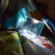 Mpowerd Luci Inflatable Solar Lantern Emergency light