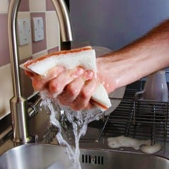 Sandwiches are better when fresh, lathered and full of detergent.