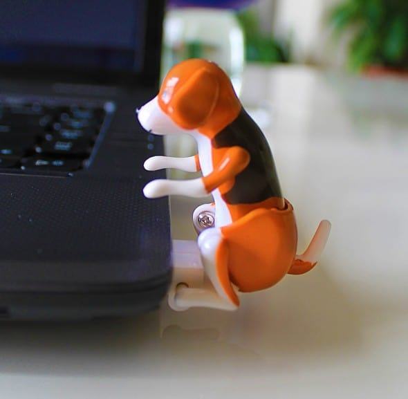 Give your computer a much-needed animal lovin'!