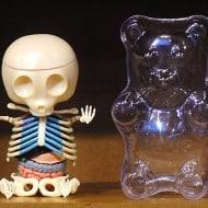 4D Master Gummi Bear Anatomy Model Buy Gift for Geek