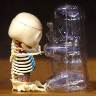 4D Master Gummi Bear Anatomy Model Vinyl Art Toy