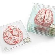 ThinkGeek Brain Specimen Coasters Cool Gift to Buy Officemates