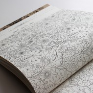 Secret Garden An Inky Treasure Hunt and Coloring Book Flower Page