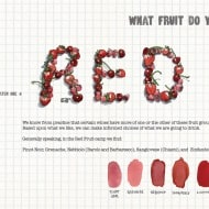 The Essential Scratch and Sniff Guide to Becoming a Wine Expert Book Page Red