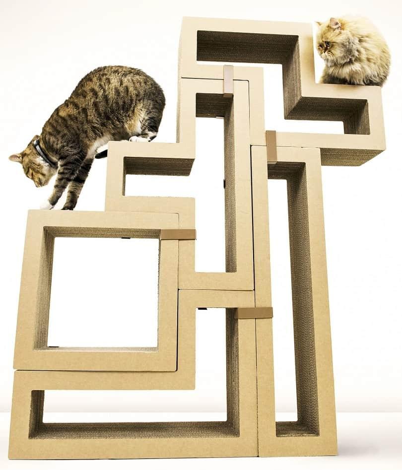 Help cats scratch their own Tetris itch.