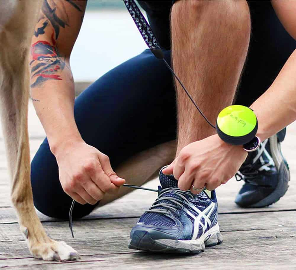 Don't get tangled up in your dog's leash.