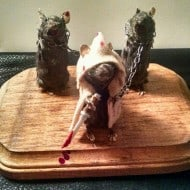 The Curious 13 The Walking Dead Michonne and friends taxidermy mice Creepy Home Decoration