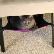 Cat Crib Cat Hammock Feline Bed
