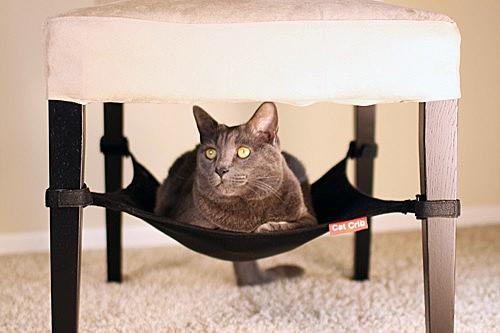 Space-saving cat hammock your feline will love!