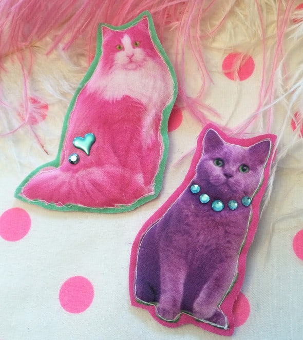 Brightly neon colored cats for an extra neon get up.