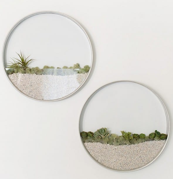 Hang a small desert on your wall.