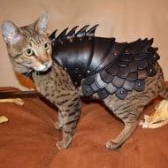 Savage Punk Cat Battle Armor Cool Animal Suit