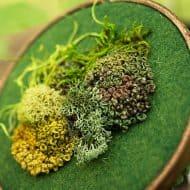 Spectremma Moss Embroidery Good Home Decor