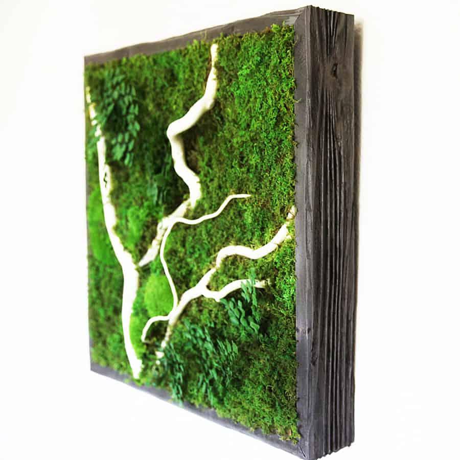 Artisan moss no care green wall art noveltystreet for Green wall art