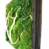 Artisan Moss No Care Green Wall Art Home Decor