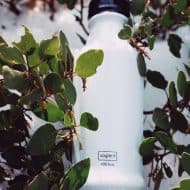Soylent Ready To Drink Food Good Source of Protein