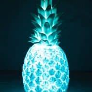 Anthropologie-Pineapple-Light-Blue-Night-Light