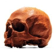 Black Chocolate Co Anatomically Correct Chocolate Skull Finished with Fine Cocoa Powder
