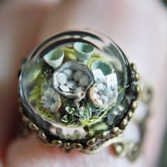 Wrap a piece of nature around your finger.