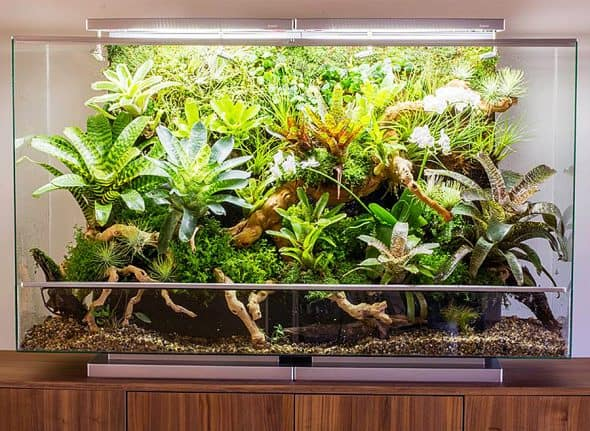 Self-contained ecosystem that replicates real environments.