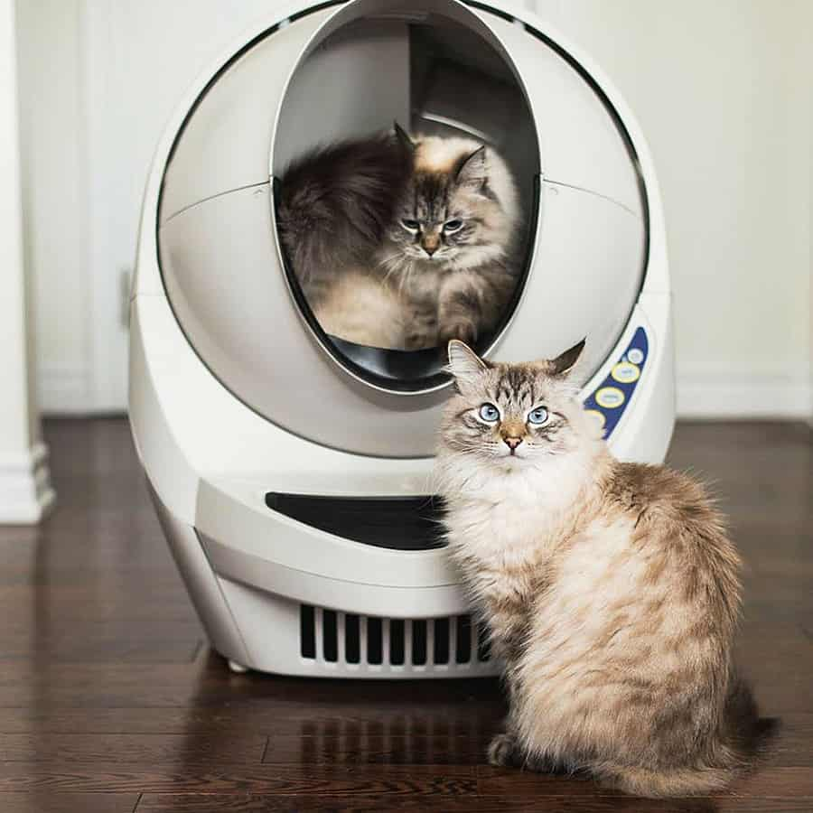 Cat cleanup moves into the future.