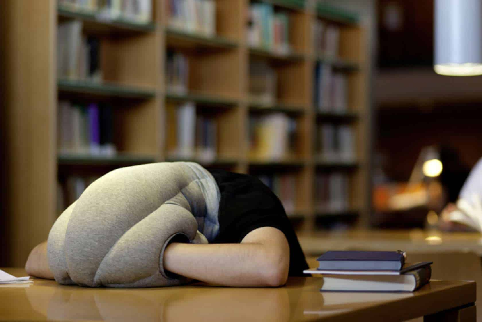 Ostrich Pillow Nap At the Library