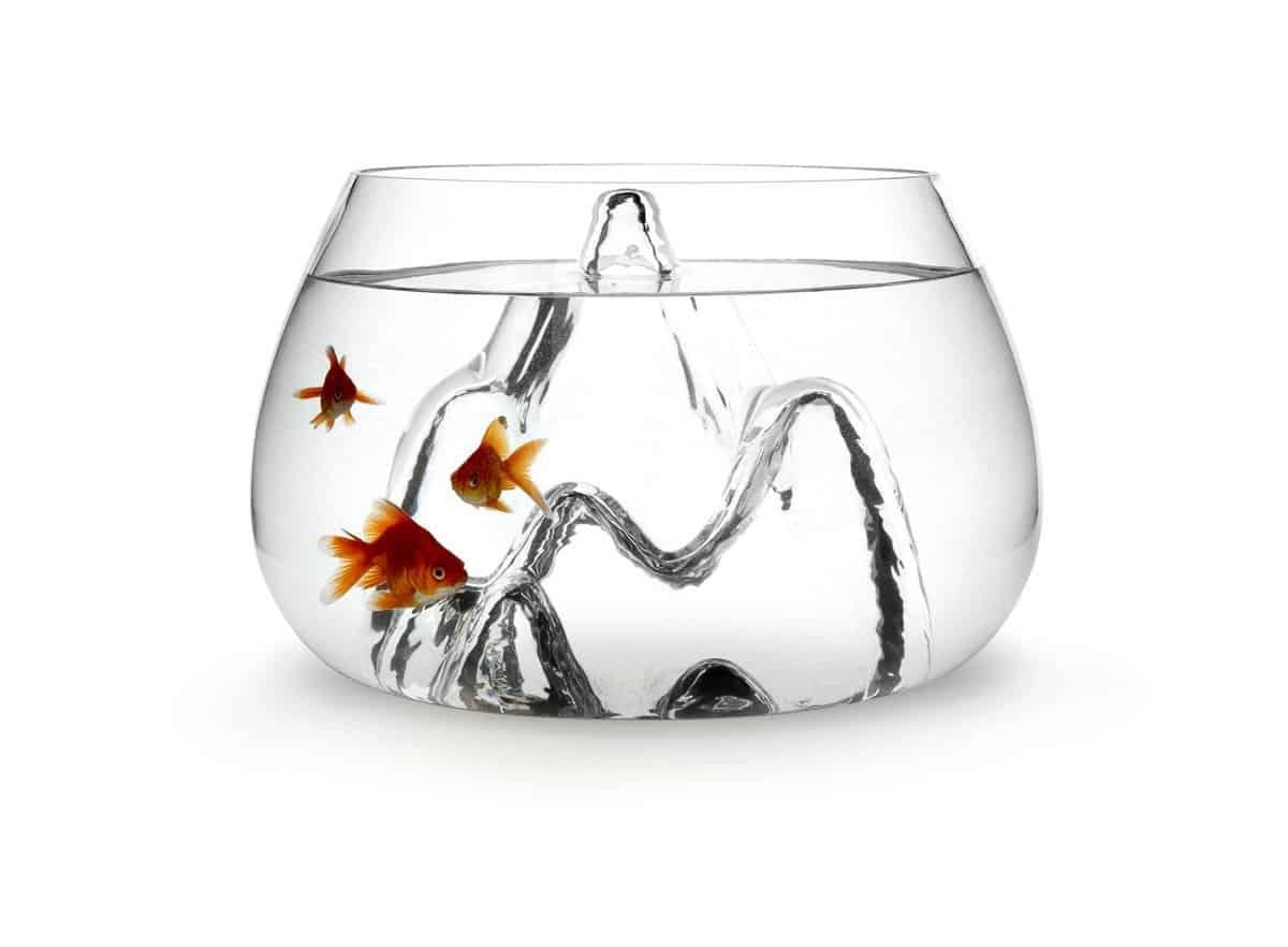 Aruliden Glasscape Fishbowl Gold Fish
