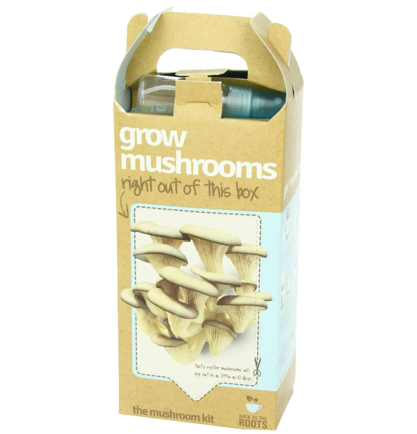 Back to the Roots Oyster Mushroom Kit Front Side Organic