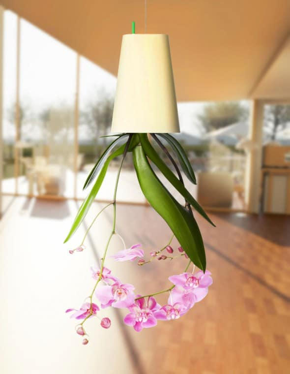 Boskke-Sky-Planter-Pink-Orchid-Upside-Down-Design