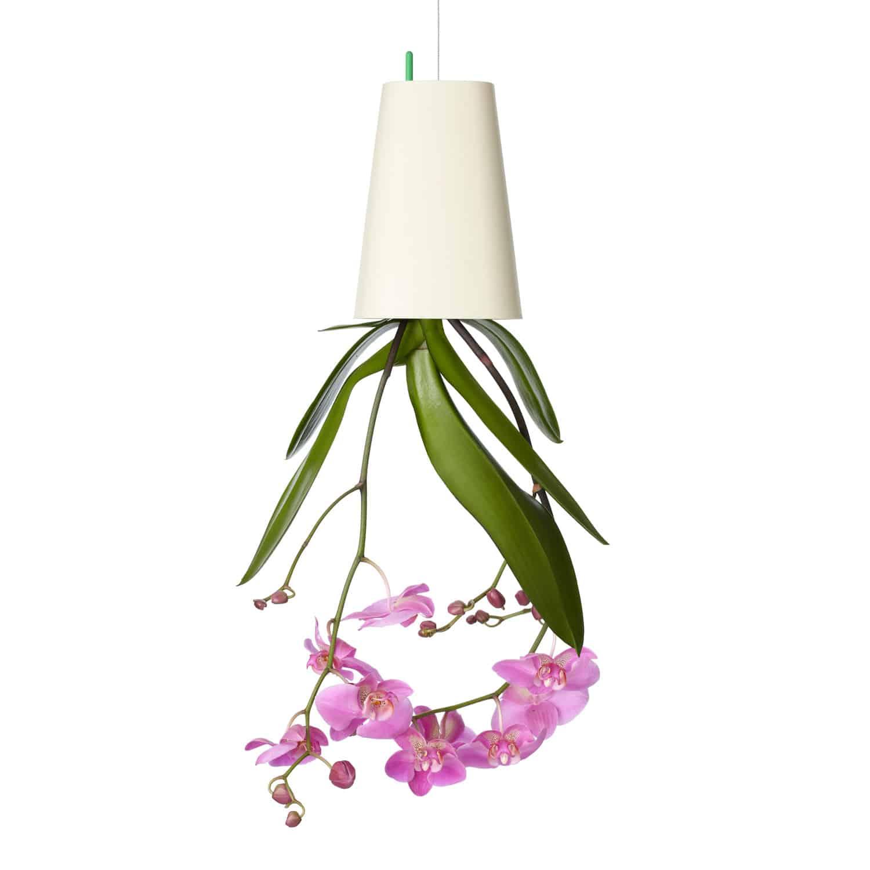 Boskke Sky Planter Pink Orchid