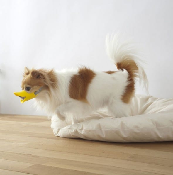 Duck-Dog-Muzzle-Cute-Pet-Gift-to-Buy