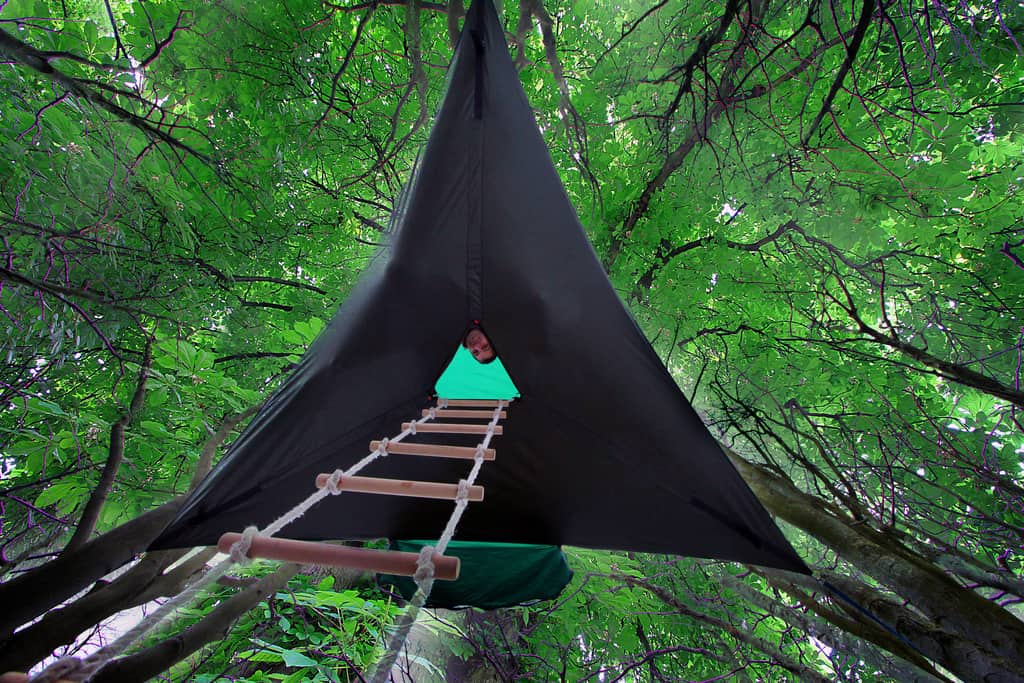 Tentsile Stingray tent Tree tent ladder