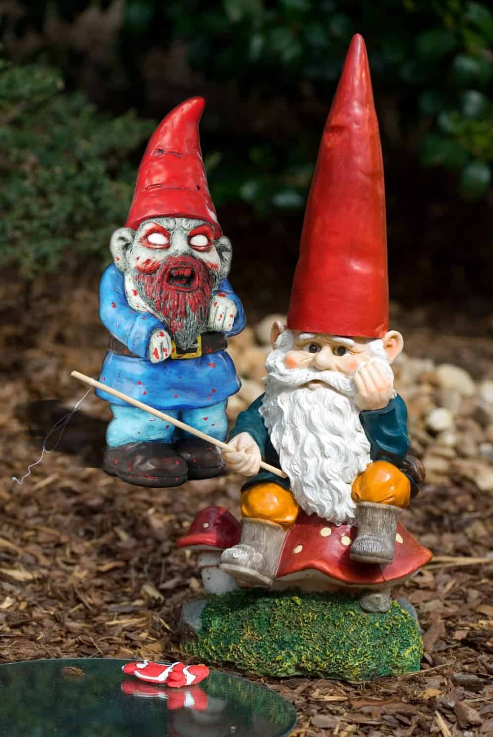 Thumbs Up! Zombie Garden Gnome REady to Bite