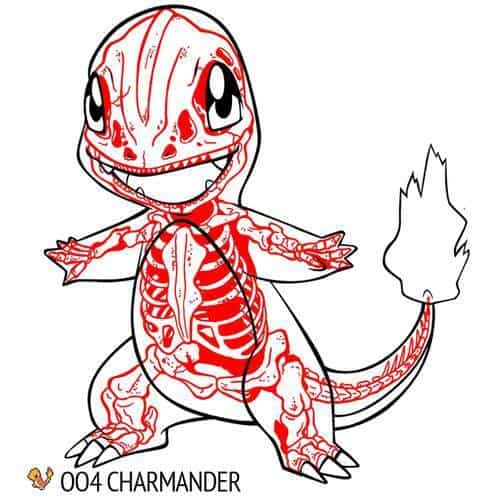 Chris Panda X-Ray Series Charmander Pokemon